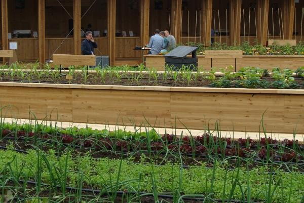 Slow Food garden