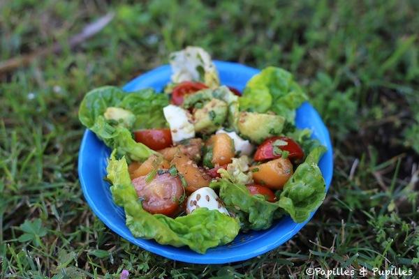 Salade-fraicheur-au-melon-avocat-tomates-et-mozzarella